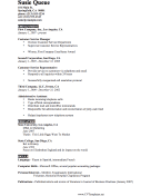 Brief CV Template