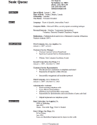 Expertise CV Template (A4)
