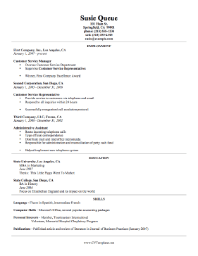 Technical CV Template